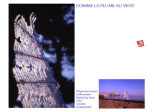 06_COMME LA PLUME AU VENT
